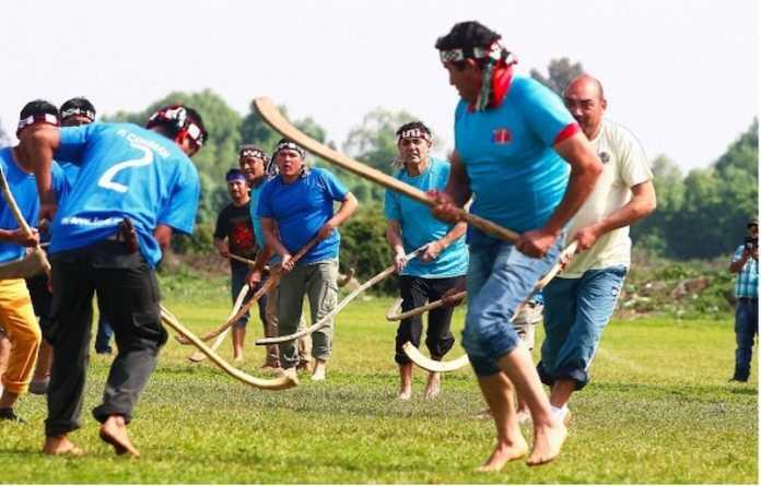 pueblo mapuche chile palin