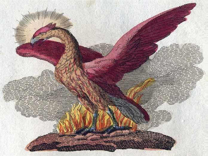 leyenda ave fenix