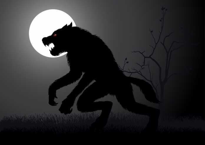 origen y leyendas de los hombres lobo