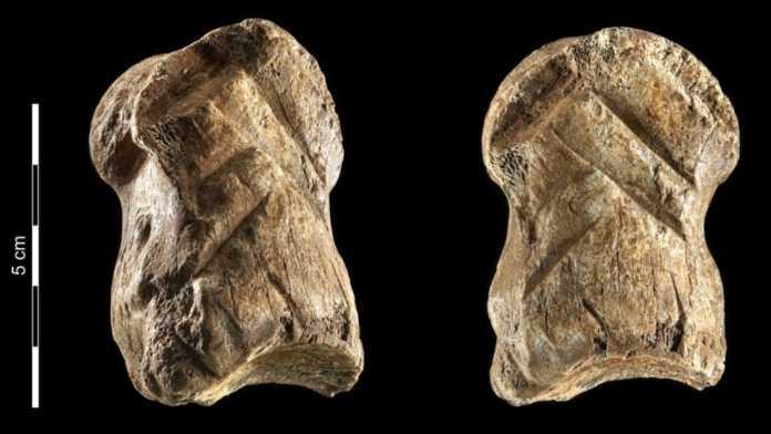 origen arte hueso tallado neandertales