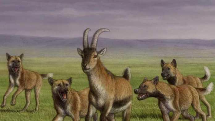 canes prehistoricos