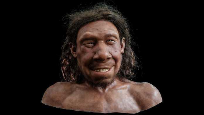reconstruccion facial neandertal